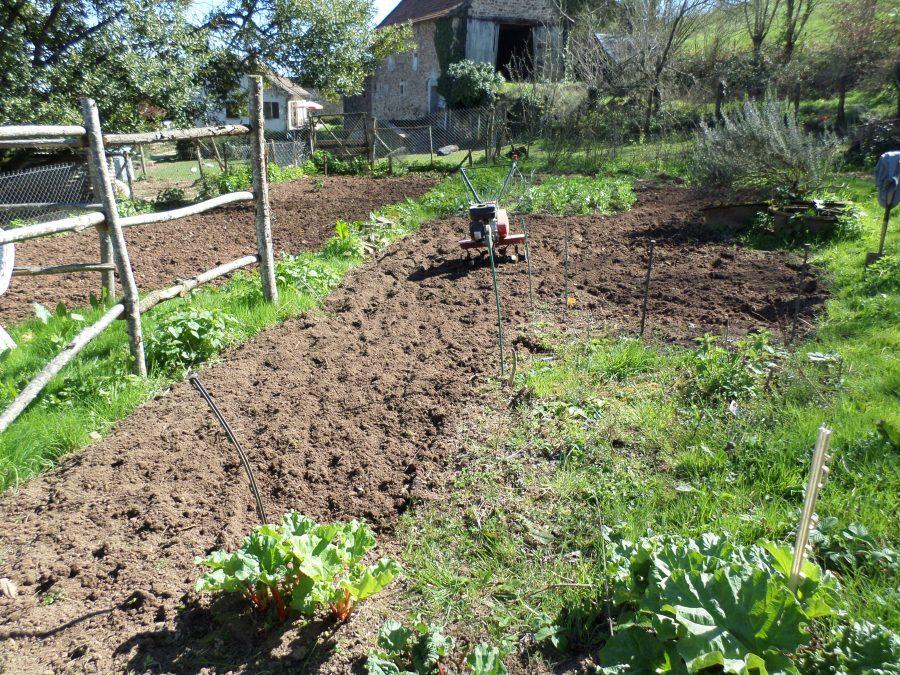 he vegetable garden